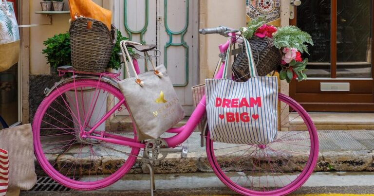 dream big bike with flowers, bags of groceries, country side